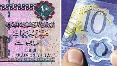 صورة خبير اقتصادي: العملة البلاستيكية عمرها الافتراضي حوالي 12 عامًا