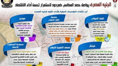 صورة الجنيه المصري يواصل حصد المكاسب كمردود لاستمرار تحسن أداء الاقتصاد